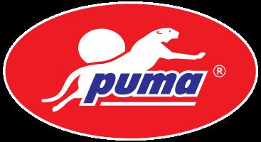pumapaint.vn